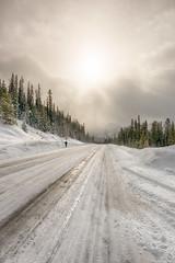 rocky mountians- (Ken Wiebe) Tags: trees snow mountains water alberta banff lakelouise castlemountain bowlake marblecanyon brittishcolumbia january2016