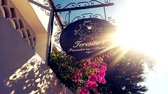 Teresita's, lamos Sonora (Tiger.Lily) Tags: sky sonora mexico bistro bakery alamos panaderia