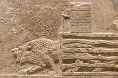 DSCF7005.jpg (Darren and Brad) Tags: england london cage thebritishmuseum assyria assyrian sportofkings ashurbanipal lionhunting royallionhunts