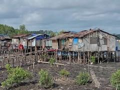 Vilage Papua Timika Mimika Pomako at Pomako Village (eriko_ie) Tags: papua vilage timika mimika pomako