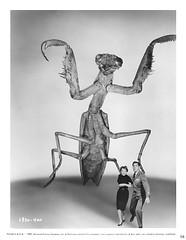 "1957 ... ""Deadly Mantis"" (x-ray delta one) Tags: sf illustration vintage space astronaut aliens retro nasa nostalgia 1940s 1950s spacestation scifi americana sciencefiction spaceship 1960s outerspace tomorrowland atomic populuxe rocketship cosmonaut thefuture aerospace worldoftomorrow spacerace spaceexploration warpdrive jamesvaughanphotography"