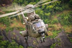 HM-4 JAGUAR (Johnson Barros) Tags: lift flight cargo helicopter jaguar caracal helicoptero helibras voo itajuba ec725 hm4 johnsonbarros eurocopterec725 airbushelicopter johnsonbarros