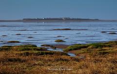 HILBRE ISLAND (David~Preston) Tags: uk england coast westkirby merseyside hilbreisland deeestuary thewirral