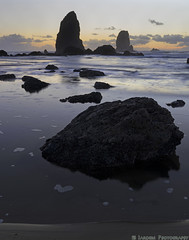 Do Seabirds Dream? (mjardeen) Tags: ocean sunset yellow rock oregon reflections landscape coast twilight waves pacific or sony tide 28mm perspective pools foam gloom f2 fe cannonbeach seabirds seastack gloaming 282 nikcolorefex landscapesshotinportraitformat