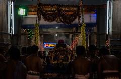 Lord in Swing (Padmanabhan Rangarajan) Tags: india festival temple chennai chariot carfestival parthasarathytemple nikond750