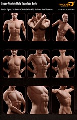 PHICEN PL2015-M31 Male Regular Build Steel Seamless Body - 9__46495.1456784047.1280.1280 (Lord Dragon 龍王爺) Tags: hot toys actionfigure doll seamless malebody onesixthscale 16scale phicen 12inscale