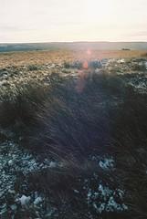 23 Middleton Moor, near Ilkley (I  Minox) Tags: film kodak yorkshire olympus om1 olympusom1 100asa ilkley ektar c41 2015 om1n olympusom1n kodakektar100 middletonmoor om1033