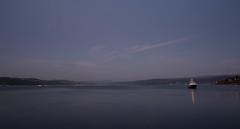 Oriental Bay (whitebear100) Tags: newzealand waterfront harbour nz wellington northisland