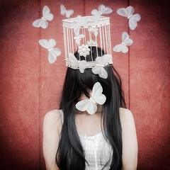 more than words (sherriscarano) Tags: selfportrait wall butterfly fly wings surreal cage conceptual