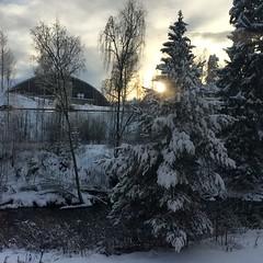 (heidibergersen) Tags: winter snow norway gjvik