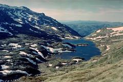 Lake Albina (eclectic.eclectus) Tags: lake film analog kodak kosciuszko kosciusko rollei35 c41 homedeveloped glaciallake kodakultramax lakealbina