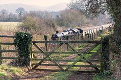 Drifting Riddles (4486Merlin) Tags: england southwest europe unitedkingdom transport somerset steam railways westcountry gbr westsomersetrailway heritagerailways exbr woolstonmoor brstd4mt264t 50thanniversaryclosureoftheline 8004380072 sd50thclosureanniversary