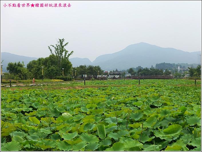 牙山神井湖水公園 (44).JPG