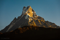 Machapuchare (Mt. Fishtail) (Steffen Walther) Tags: morning travel nepal mountain snow asia holy canon5d himalaya pokhara fishtail canon70200 machapuchare mtfishtail fotografjena steffenwalther