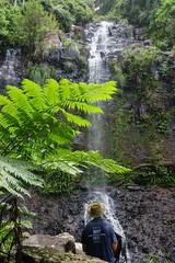 Poonyahra Falls (NettyA) Tags: waterfall rocks australia bushwalking qld queensland bushwalk treefern springbrook goldcoasthinterland 2016 springbrooknationalpark scenicrim seqld warriecircuit bushwalker scbwc sonya7r poonyahrafalls