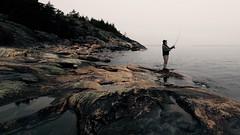 Tulego kala (Edgar Myller) Tags: sea fish nature rock stone suomi finland fishing day cloudy kala luonto porkkala porjkala
