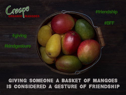 "Mangoes & Friendship • <a style=""font-size:0.8em;"" href=""http://www.flickr.com/photos/139081453@N03/25759339725/"" target=""_blank"">View on Flickr</a>"