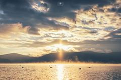 (Kelvin Wong Photo) Tags: city sky nature japan fog zeiss sunrise landscape photography hongkong tokyo photographer sony photograph    photooftheday            a7r  photoofday discoveryjapan  vsco minimalpeople pbhk sonyhongkong vscocam rsaminimal vsconature teamjp sel1635z milkfoto vscojapan