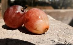 UVA (FN 12) Tags: flickr fruta estrellas uva oval flickrfriday