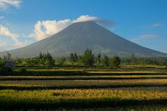 Lenticular. Mt Mayon (Laura Jacobsen) Tags: volcano philippines mayon bicol luzon mtmayon legaspi legazpi bicolandia mayonvolcano