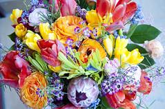 Flores de colores  195/365 (Susana RC) Tags: flores flower flora colores ramo e65 proyecto365