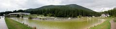 stagno di roana. (Michela Miketosk Marcucci) Tags: wood mountains montagne pond altopiano asiago vicenza bosco stagno roana miketosk miketoskcom michelamarcucci michelamiketoskmarcucci