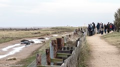 Donna Nook National Nature Reserve. (Jeff Derbys) Tags: fence donnanook lincolnshirewildlifetrust fencedfriday
