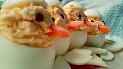 Chickens (OP) Tags: chicken breakfast egg