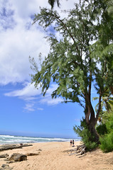 HWI_1022 (Ikuhito) Tags: ocean blue cloud beach hawaii oahu wave northshore