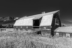(CareyCloss) Tags: sky blackandwhite bw mountain canada building monochrome field grass barn fence landscape outdoors bc britishcolumbia hay oldbuilding tinroof
