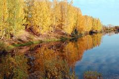DSC_6071 (Rustam Bikbov) Tags: autumn september 2012    sverdlovskoblast