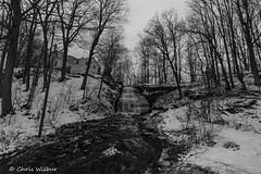 Clarendon Falls (B&W) (awaketoadream) Tags: new york winter white black waterfall exposure gloomy state cloudy monotone niagara falls short western clarendon escarpment