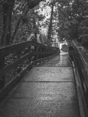 UK - Scotland - Luss (Marcial Bernabeu) Tags: uk bridge rain puente scotland lluvia unitedkingdom united kingdom escocia raining bernabeu reinounido luss marcial bernabu granbretaa
