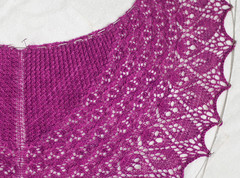 _DSC1259 (KateSi) Tags: pink rose rosa fuschia shawl knitty sjal chal laminaria rosado chle scialle shoulderette