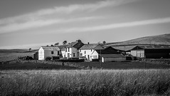 Newbiggin . Broadleys Gate . (wayman2011) Tags: uk rural countryside farms grasses dales pennines lightroom countydurham teesdale newbiggin bwlandscapes canon50d wayman2011