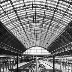 Londres saint Pancras (lili_kanio) Tags: uk london station architecture train europa europe gare eurostar londres stpancras bnw lignes