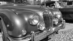 Jaguar, Unsurpassed Class... (carlo612001) Tags: auto classic cars car lady automobile fair class jaguar classe storica