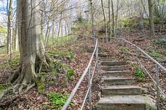 17.April 2016 13h 50m 23s (lothar_blank) Tags: uckermark boitzenburg