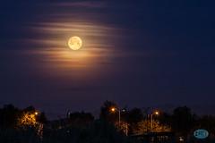 0421 IMG_3697 (JRmanNn) Tags: morning moon early lasvegas full duckcreek weehours sweepingcloudstrokes