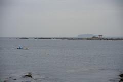 20160424-DSC_8902.jpg (d3_plus) Tags: sea sky fish beach nature japan nikon scenery diving daily snorkeling  28105mmf3545d nikkor  kanagawa hayama     dailyphoto  apnea  thesedays  28105    28105mm skindiving  zoomlense     28105mmf3545 d700 281053545 nikond700 aiafzoomnikkor28105mmf3545d 28105mmf3545af   aiafnikkor28105mmf3545d