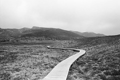 Cradle Mountain - Overland Track (Milo R.) Tags: leica analog highlands kodak path australia tasmania portra cradle dovelake cradlemountain gondwana overlandtrack