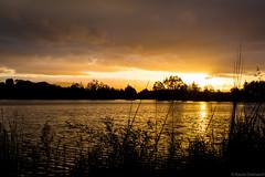 (kayters) Tags: california longexposure sunset sky lake nature northerncalifornia clouds reflections landscape golden spring naturallight bayarea april kaytedolmatchphotography kathleendolmatch