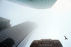 Looking up (schnwandt) Tags: winter fog vancouver britishcolumbia financialdistrict marinebuilding mnptower westhasting