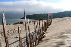La duna de Bolonia, Tarifa. Cdiz. (Rafa Velazquez) Tags: beach sand dune playa arena cadiz duna tarifa