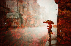 -on the rusty street (Hodaka Yamamoto) Tags: street autumn film rain silhouette umbrella maple lomo lomography doubleexposure double lomolca multipleexposure negative filmcamera doubles multiexposure filmphotography