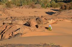 Praying (Tahia Hourria) Tags: sahara nature montagne algeria sand desert muslim islam pray praying nora meditation algrie touareg tahia dsert tassili tamanrasset dc alger  chech mdiation targi prire djanet houria touaregue algriens hourria aitaissa atassa sert