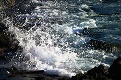 sea splash (heartinhawaii) Tags: ocean sunset sea nature hawaii coast seaside rocks pacific shoreline wave maui splash watersplash oceansplash 808 lavarocks southmaui rocksandsea nikond3300 ahihinaturereserve