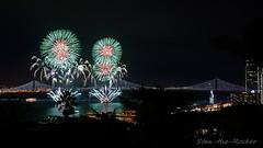 View from Coit Tower - Bay Lights Re-Lighting and Super Bowl City Fireworks Show - 013016 - 11 (Stan-the-Rocker) Tags: sanfrancisco sony coittower northbeach embarcadero ferrybuilding telegraphhill nex sanfranciscooaklandbaybridge sfobb sb50 baylights sel1855 stantherocker