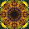 abstract (chrisinplymouth) Tags: art circle symmetry pattern design artwork circular geometric symmetrical geometry digital octagon octagonal square round mandala cw69x cw69sym digitalart plx kaleidoscope