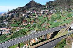 The climb from Camara do Lobos to Cabo Girao (Mark Wordy) Tags: road mountain island terraces madeira slopes cabogirao facho camaradelobos